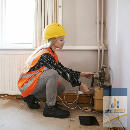 An Inspector Checks Electrical Systems in a Home.