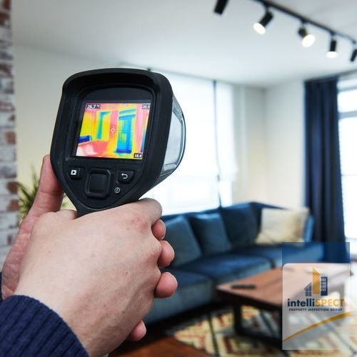 A Thermal Imaging Camera Is Used to Detect Energy Loss.